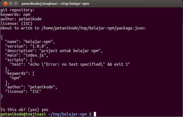 Pembuatan file package.json dengan NPM