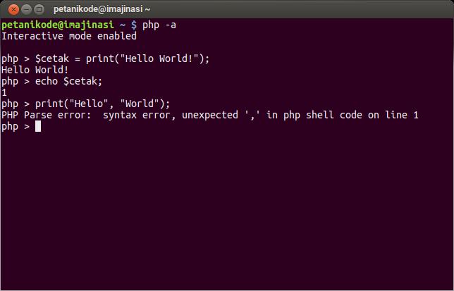 Fungsi Print pada Console PHP